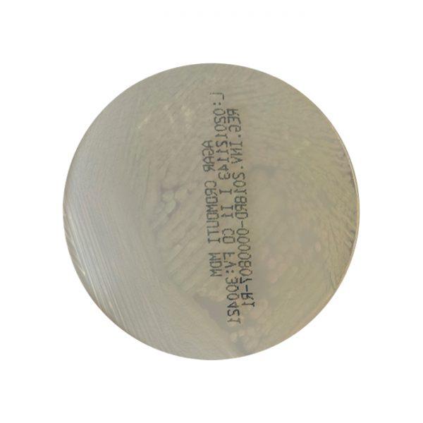 agar-cromo-uti-cromogenico-orina-pseudomonas-aeruginosa
