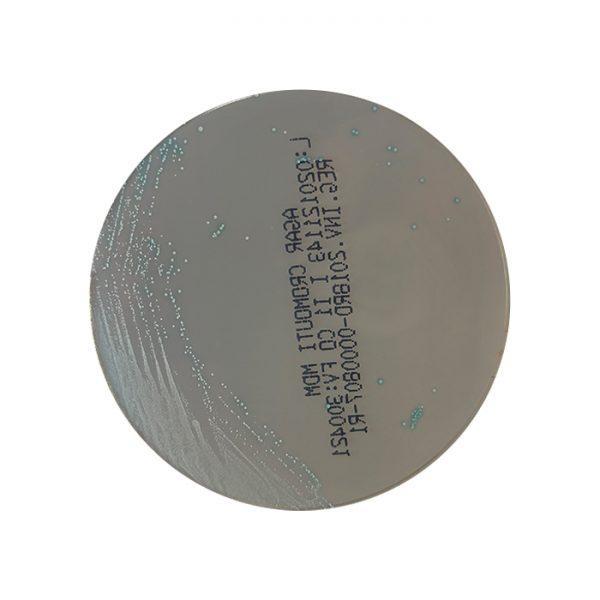 agar-cromo-uti-cromogenico-orina-sag-24-horas-mdm-cientifica